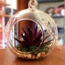 Florero redondo colgante 8 cm. vidrio.
