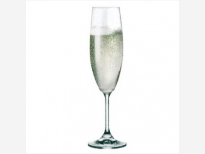 Copas de champagne 220 ml. Lara Bhoemia Martina Pack de 6 uniddes
